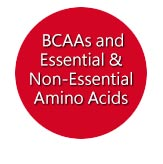 BCAAs and Essential & Non-Essential Amino Acids